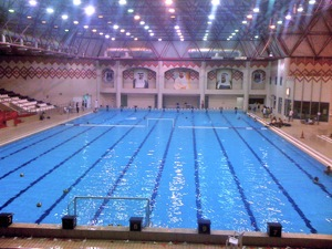 The search for the best Olympic-sized swimming pool in